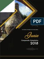 JUNIN COM ESTADISTICO 2018.pdf