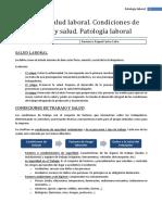 E12 - Patología laboral (T8)