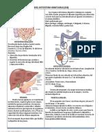 SII MALU.pdf