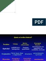 Epitélio histologia