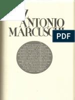 Entrevista com Marcuschi