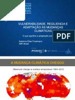 VULNERABILIDADE, RESILIENCIA E ADAPTAÇÃO ÀS MUDANÇAS CLIMÁTICAS