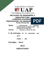 informacion y estudios basicos necesarios para  puentes.docx