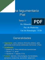 11_Sistema Tegumentario Piel 11