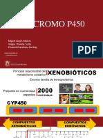 Citocromo p450 2018-2