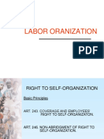Right to Sel Organization