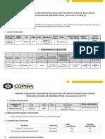 Apertura Convocatoria Planta Temporal Copnia 2019 010pt (1)