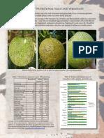 Breadfruit Nutrition Fact Sheet