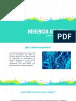 HERENCIA GENETTICA