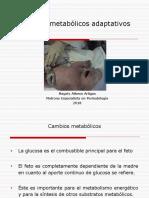 10.Cambios metabólicos .pdf