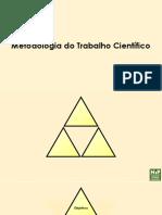 MTC Triforce - NIP Macau