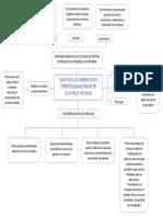 mapa conceptual- Guia para la elaboracion de estrategias nacionales.docx