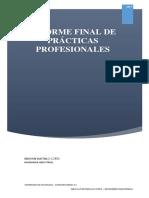 Trabajo de Practicas Profesionales - Brayan Bustillo Cotes - 2010116019