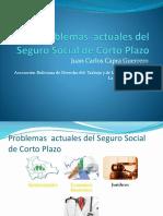 Problemas Actuales Del Seguro Social de Corto Plazo