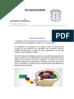 Trabajo de Psicologia-el Cerebro Adolescente