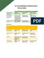 MÚSCULOS DE LAS REGIONES SUPERFICIALES DE LA CARA.docx