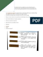 Documento Pato Lab 5