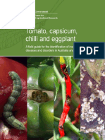 Identification of Insect Pests, Beneficials, Disease & Disorders_Tomato,Chilli & Eggplant