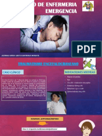 Proceso de Enfermeria Emergencia Diapos