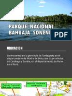 Parque Nacional Bahuaja Sonene