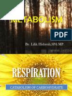 2. CATABOLISM_LilikH.pptx
