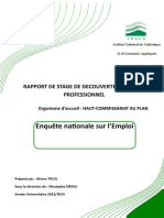 RAPPORT HCP.docx
