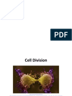 Cell-Division-Mitosis-Meiosis-ppt.pptx