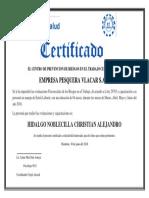 vlacar.pdf