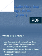 08 Genetically Modified Organisms.pptx