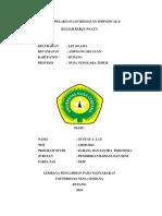 contoh laporan kkn individu.docx