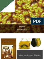 LIPIDOS RESUMEN.pptx