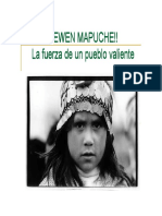 mapauche