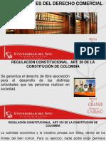 REGULACION CONSTITUCIONAL
