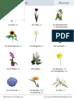 Wortschatz Blumen