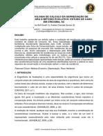 AlineBoffGraeff.pdf