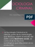 5 Sociologia Criminal y Delincuencia5