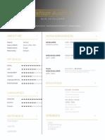 developer resume