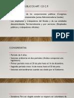 Miembros de corporaciones públicas.pdf