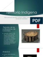 Territorio Indigena.pptx
