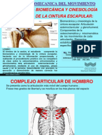 4_BIOMECANICA_HOMBROGLENOIDEA.pdf