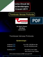TVP Craveri 2011.ppt
