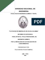 rojas_rf.pdf