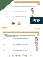 sentidos_somosellaman_5.pdf