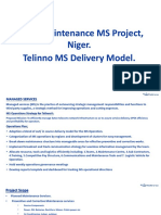 Niger MS Project_ Delivery Strategy_vlast