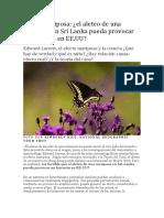 Efecto mariposa.pdf