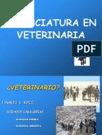 03.Veterinaria