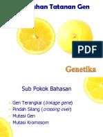 10-11. Perubahan Tatanan Gen