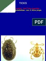Ticks and Mites