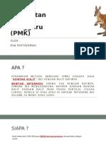 PRESENTASI PMK.pptx