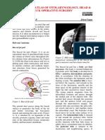 Buccal fat pad flap-1.pdf